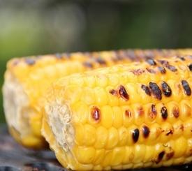 Mazorcas de maíz especiadas